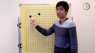 Common 3-4 Point, Low Approach Joseki for 3-4 Dan Players